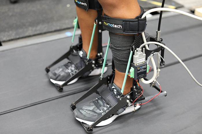 Ankle Exoskeleton