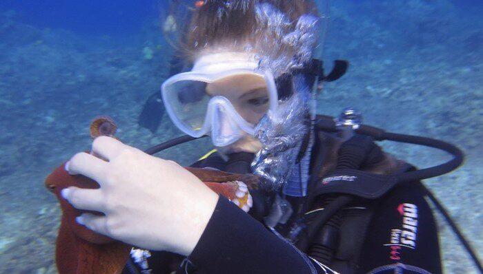 Lauren Paulson diving with an octopus