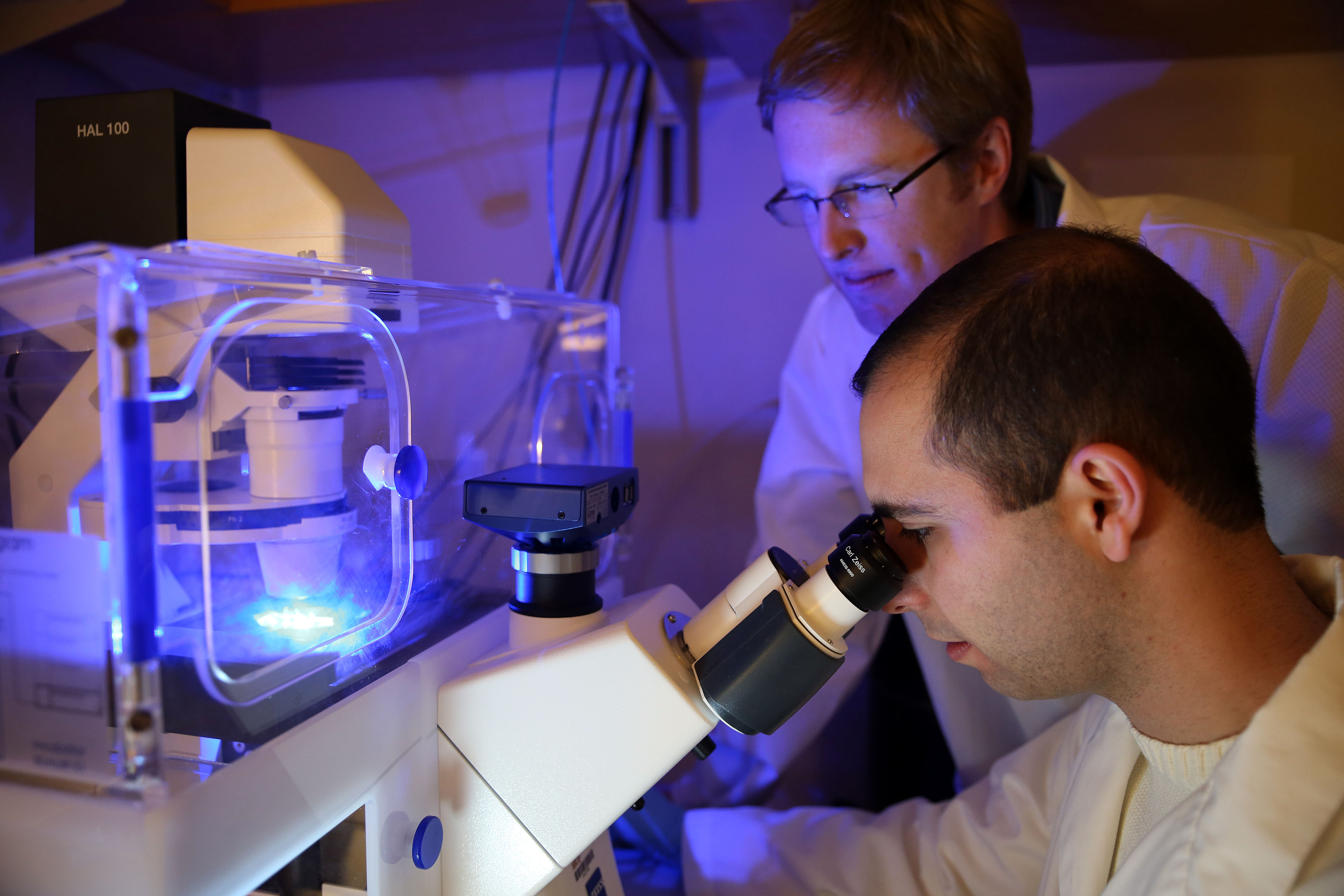 Gates Foundation Grant Supports Tissue Engineered Model Of