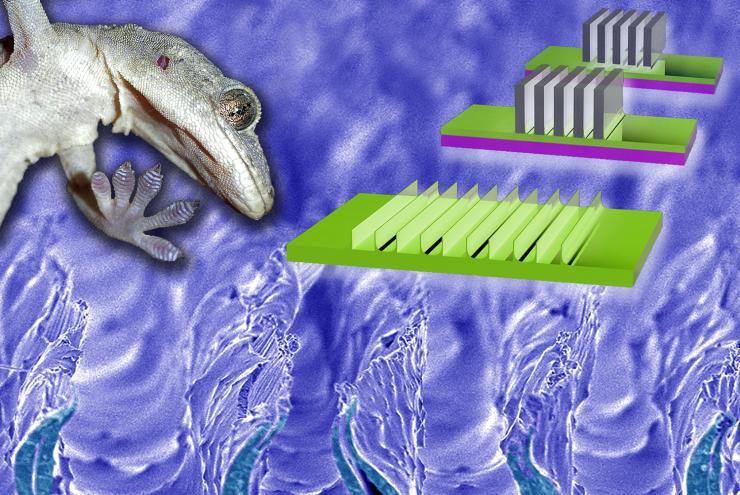The inset on the upper right illustrates how the gecko adhesion surface is made by pushing lab razor blades into a setting polymer. The razor blades are pulled out, leaving indentations and stretching some of the polymer up, resulting in flexible walls th