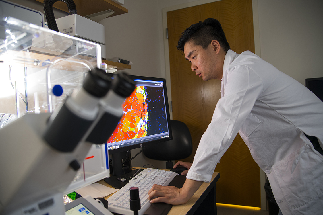 First author Woojin Han observes muscle tissue samples treated with the new MuSC nanohydrogel. Credit: Georgia Tech / Christopher Moore